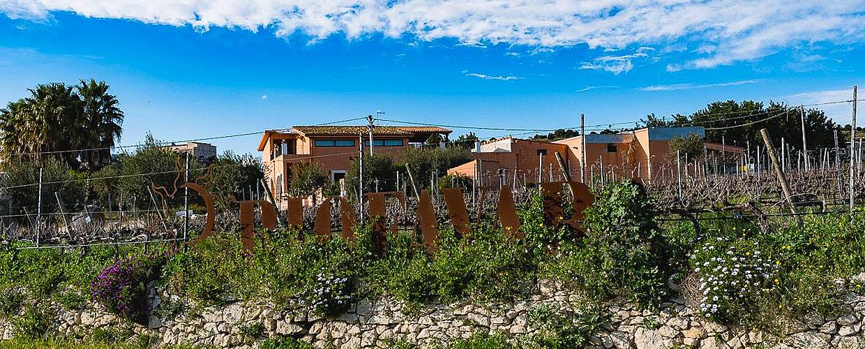 Coi vini Riofavara andiamo a Ispica